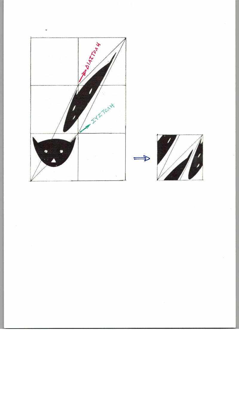 Η απεικόνιση, που έμεινε γνωστή ως «ο μετασχηματισμός της γάτας του Άρνολντ»